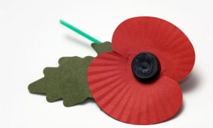 Remembrance-day-poppy--007